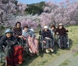 石川町の河川敷で満開の桜を見ながらお花見をしました。