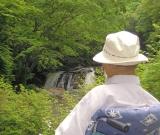 鮫川村にある江竜田の滝です。 素晴らしい景色に見入っています。